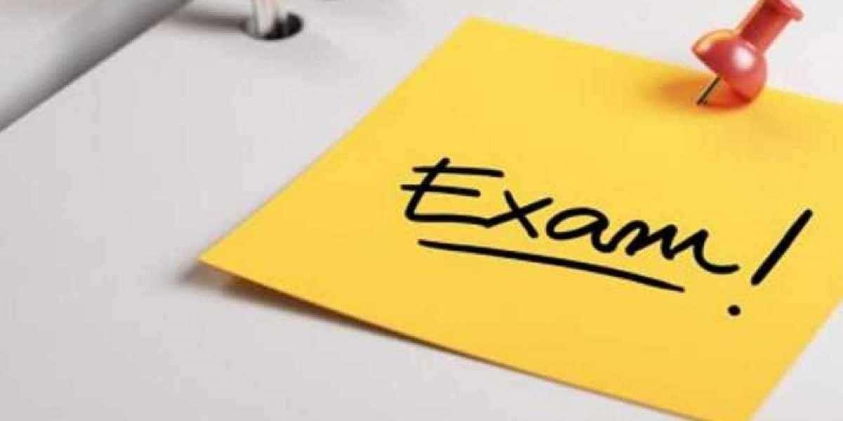 Exam Dumps The training even though The Exam Dumps